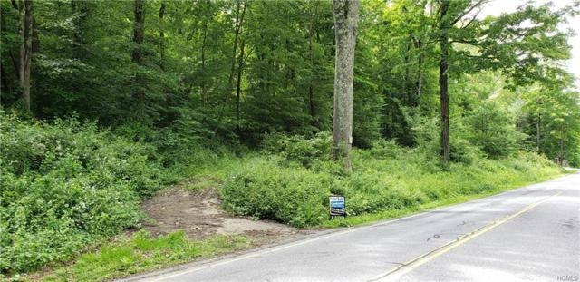 Halls Corners Road, Dover Plains, NY 12522 (MLS #4957140) :: William Raveis Baer & McIntosh