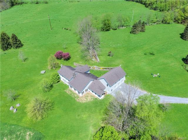 1575-1595 Holmes Hollow Road, Other, NY 13752 (MLS #4957265) :: William Raveis Legends Realty Group