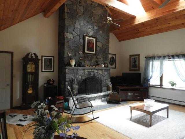 51 Dexheimer Road, Narrowsburg, NY 12764 (MLS #4957376) :: William Raveis Legends Realty Group