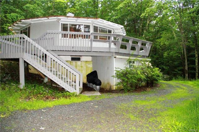 302 Kennel Road, Westbrookville, NY 12729 (MLS #4957558) :: William Raveis Legends Realty Group