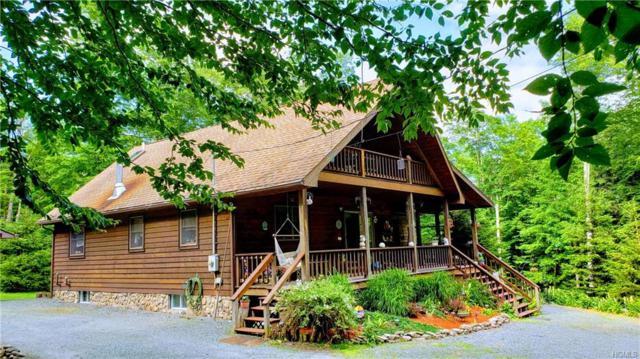 71 Forest Drive, Livingston Manor, NY 12758 (MLS #4958001) :: The McGovern Caplicki Team