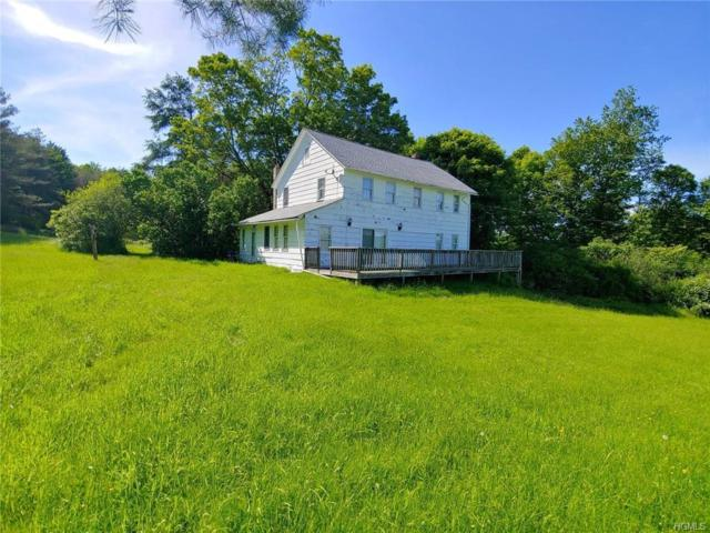 110 White Sulphur Road, Swan Lake, NY 12783 (MLS #4958085) :: William Raveis Legends Realty Group