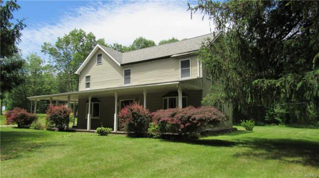 6 Mt Salem Road, Port Jervis, NY 12771 (MLS #4959566) :: William Raveis Baer & McIntosh