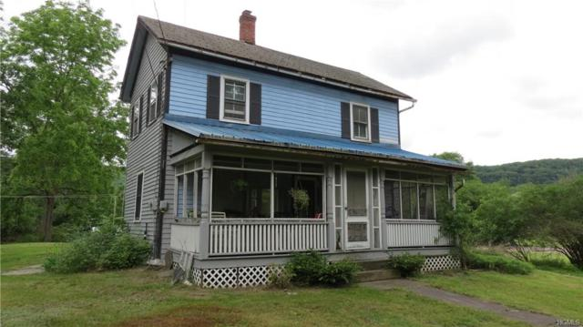 43 3rd Avenue, Narrowsburg, NY 12764 (MLS #4959920) :: William Raveis Legends Realty Group