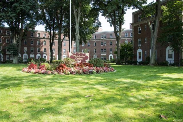 445 Gramatan Avenue Ac3, Mount Vernon, NY 10552 (MLS #4960601) :: William Raveis Baer & McIntosh