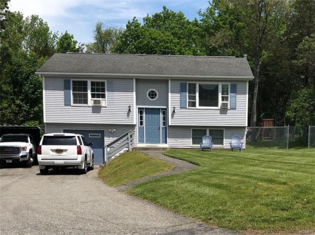 27 Nicole Lane, Wingdale, NY 12594 (MLS #4960632) :: William Raveis Baer & McIntosh