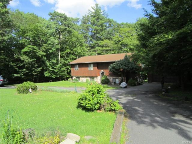 175 Dill Road, Monticello, NY 12777 (MLS #4960670) :: William Raveis Legends Realty Group