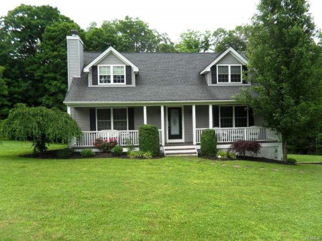 22 Birch Drive, Brewster, NY 10509 (MLS #4960881) :: William Raveis Baer & McIntosh