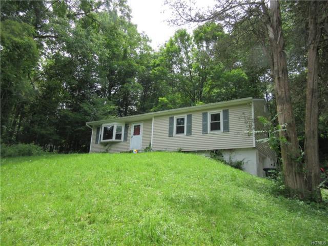 109 Lakeside Drive, Pawling, NY 12564 (MLS #4960919) :: William Raveis Baer & McIntosh