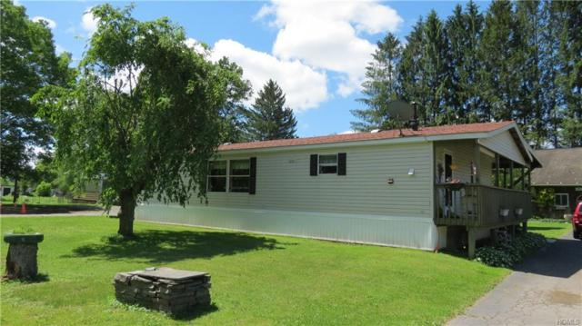 20 Cochecton Road, Cochecton, NY 12726 (MLS #4960968) :: William Raveis Legends Realty Group