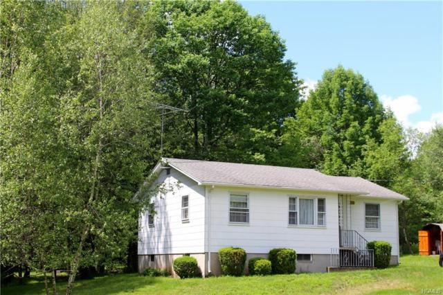 133 Lackawack Hill Road, Napanoch, NY 12458 (MLS #4961013) :: William Raveis Legends Realty Group