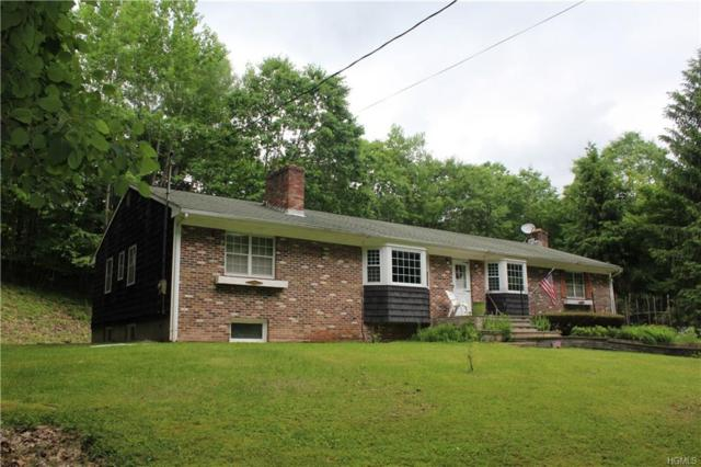 13359 County Hwy 17, East Branch, NY 13783 (MLS #4961085) :: William Raveis Legends Realty Group