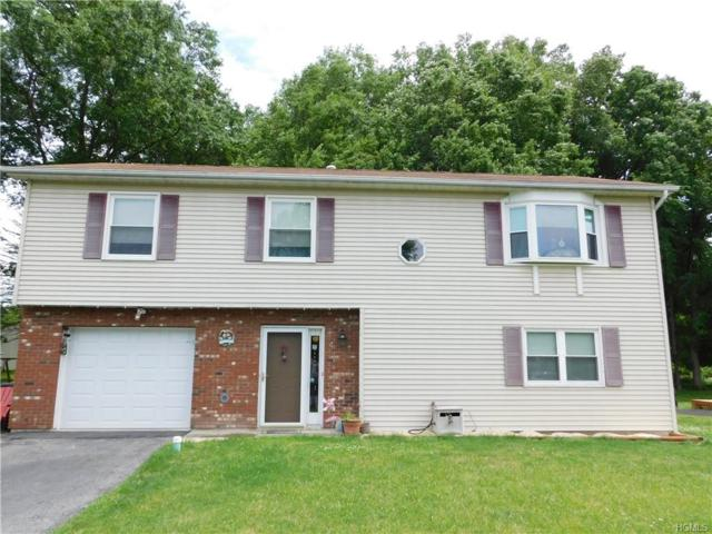 4 Sunny Place, Walden, NY 12586 (MLS #4961671) :: William Raveis Legends Realty Group