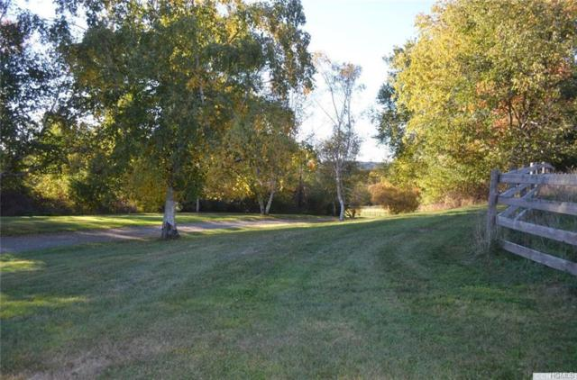 County Route 13, Chatham, NY 12136 (MLS #4961969) :: The McGovern Caplicki Team