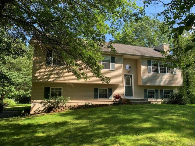 56 Youngs Lane, Bloomingburg, NY 12721 (MLS #4962029) :: William Raveis Legends Realty Group