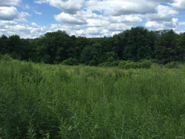 492 Long Ridge Road, Pound Ridge, NY 10576 (MLS #4962056) :: Mark Boyland Real Estate Team