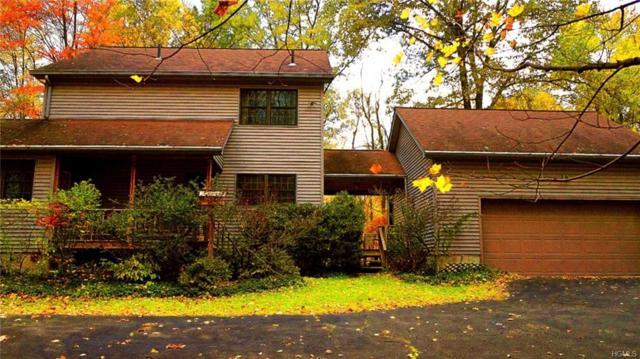 19 Prospect Hill Road, Wallkill, NY 12589 (MLS #4962671) :: The McGovern Caplicki Team
