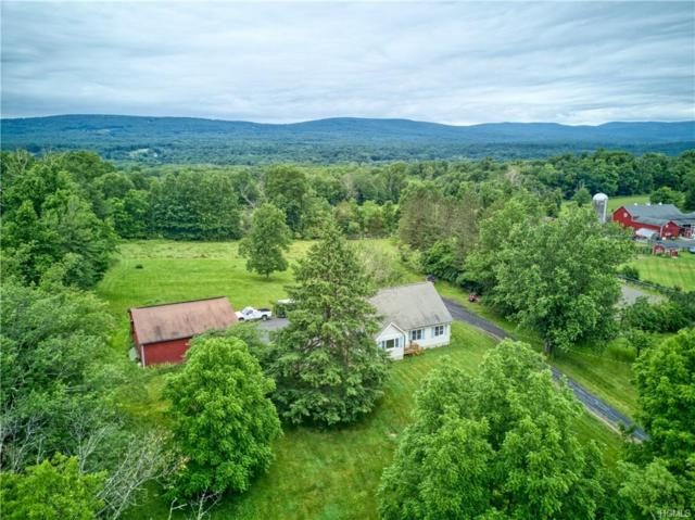 200 Dunthorne Drive, Bloomingburg, NY 12721 (MLS #4962780) :: The Anthony G Team
