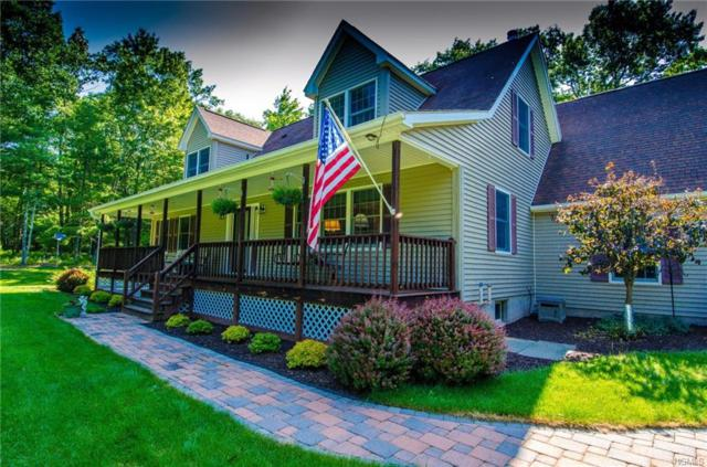 125 Francis Drive, Narrowsburg, NY 12764 (MLS #4963690) :: William Raveis Legends Realty Group