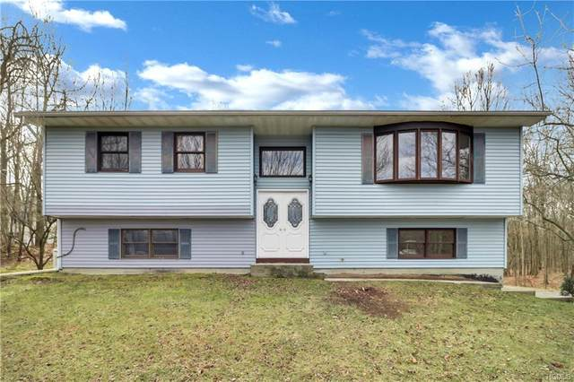 75 Bull Road, Otisville, NY 10963 (MLS #4963935) :: The McGovern Caplicki Team