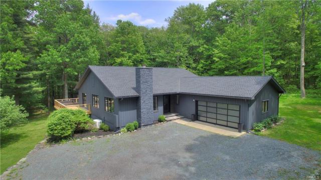 240 Stonewall Road, Austerlitz, NY 12037 (MLS #4963947) :: William Raveis Legends Realty Group