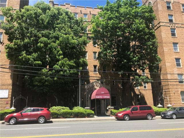 219 Bronx River Road 1G, Yonkers, NY 10704 (MLS #4964828) :: Mark Boyland Real Estate Team
