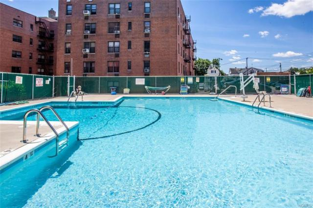 575 Bronx River Road 3A, Yonkers, NY 10704 (MLS #4964909) :: Mark Boyland Real Estate Team