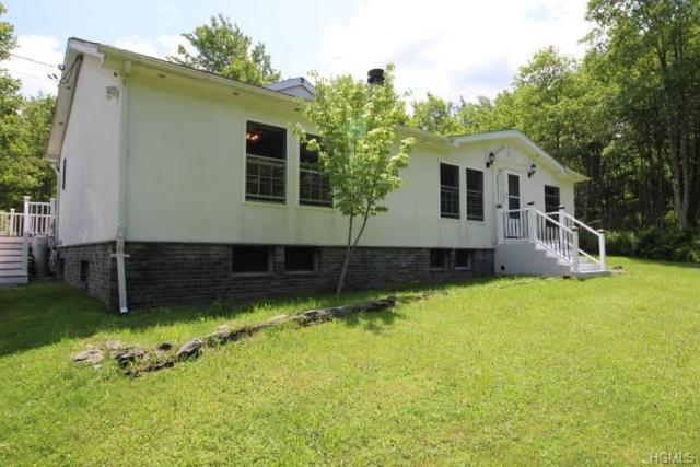 215 Dutch Hill Road, Roscoe, NY 12776 (MLS #4965618) :: William Raveis Legends Realty Group