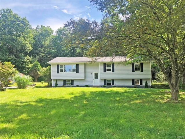 2 Collins Road, Eldred, NY 12732 (MLS #4966418) :: William Raveis Legends Realty Group