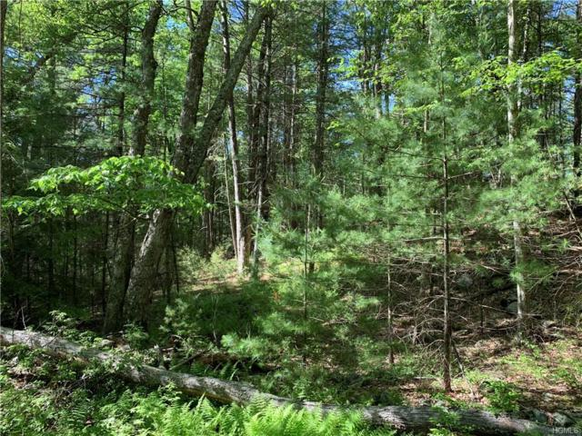 Lot 36 Leers Road, Glen Spey, NY 12737 (MLS #4966492) :: William Raveis Legends Realty Group