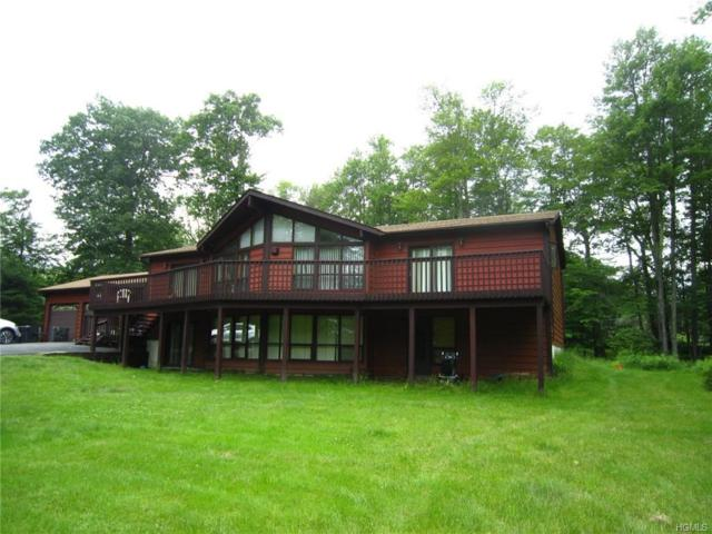 55 Lena Road, Forestburgh, NY 12777 (MLS #4966495) :: William Raveis Legends Realty Group