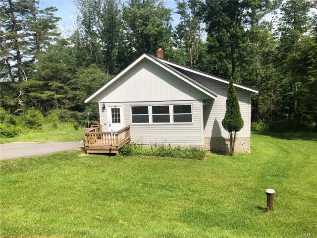 45 Highland Lake Road, Eldred, NY 12732 (MLS #4966597) :: William Raveis Legends Realty Group