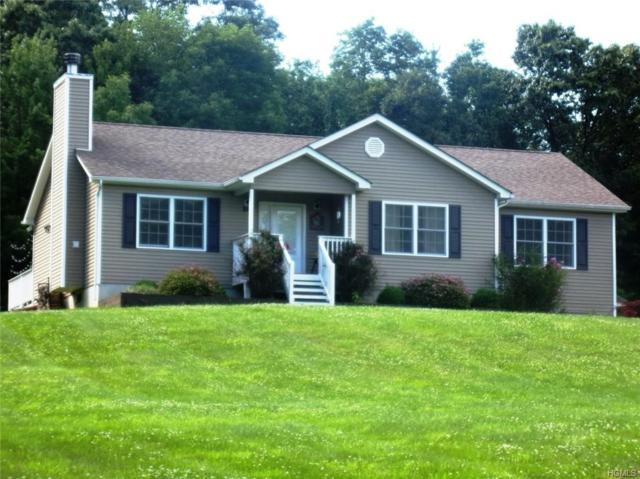 289 Logtown Road, Greenville, NY 12771 (MLS #4966739) :: William Raveis Legends Realty Group