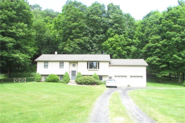 115 Downing Road, Pleasant Valley, NY 12569 (MLS #4967389) :: William Raveis Legends Realty Group