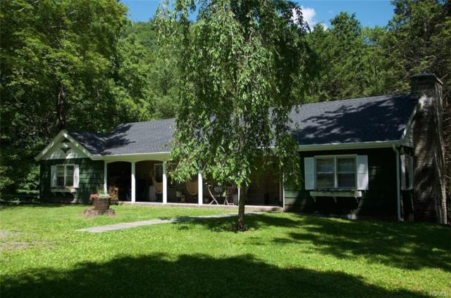 82 Denman Mountain Road, Grahamsville, NY 12740 (MLS #4967467) :: William Raveis Legends Realty Group
