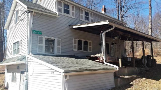 256 Mount Vernon Road, Wurtsboro, NY 12790 (MLS #4967547) :: William Raveis Legends Realty Group
