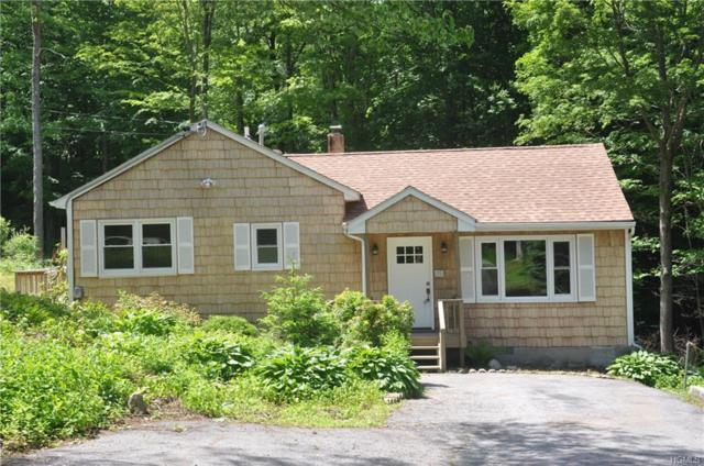 192 Rushmore Road, Stormville, NY 12582 (MLS #4967742) :: William Raveis Legends Realty Group