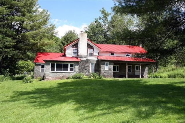 1158 Bert Medlar Road, Long Eddy, NY 12760 (MLS #4968581) :: William Raveis Legends Realty Group