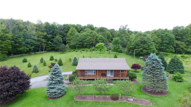 8 Clifford Lane, Parksville, NY 12768 (MLS #4968628) :: William Raveis Legends Realty Group