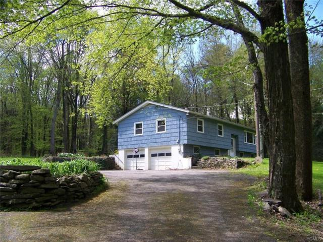 8032 State Highway23, East Meredith, NY 13820 (MLS #4968693) :: Marciano Team at Keller Williams NY Realty