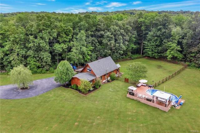 198 Woods Road, Port Jervis, NY 12771 (MLS #4968850) :: William Raveis Legends Realty Group