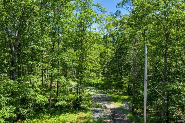 Trillium Trail, Cochecton, NY 12726 (MLS #4969666) :: The McGovern Caplicki Team