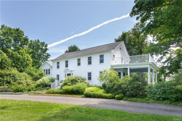 20 Hill N Dale Road, Germantown, NY 12526 (MLS #4970429) :: The McGovern Caplicki Team