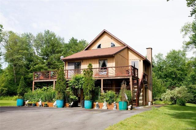 6312 State Route 52, Cochecton, NY 12726 (MLS #4970454) :: Shares of New York