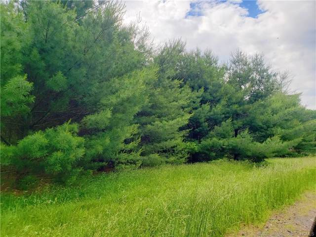 Co Road 22, Narrowsburg, NY 12764 (MLS #4970622) :: Mark Boyland Real Estate Team