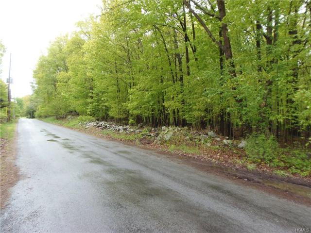 LOT 1 Bisch Road, Middletown, NY 10940 (MLS #4970706) :: The McGovern Caplicki Team