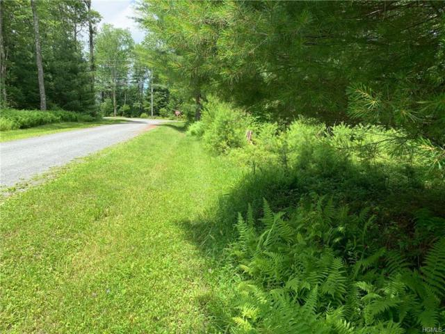 Lot 14 Misty Lane, Bethel, NY 12720 (MLS #4971277) :: The McGovern Caplicki Team