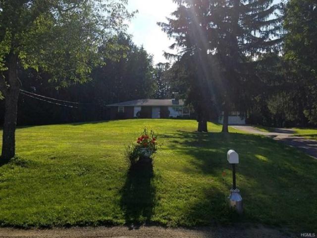 87 Rombout Road, Poughkeepsie, NY 12603 (MLS #4971302) :: William Raveis Legends Realty Group