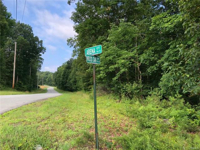 Wood Oak Lot 26, Narrowsburg, NY 12764 (MLS #4974569) :: William Raveis Legends Realty Group