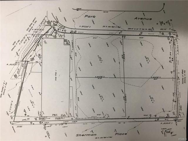 Park & Sherman Lots, Ossining, NY 10562 (MLS #4974731) :: Mark Seiden Real Estate Team